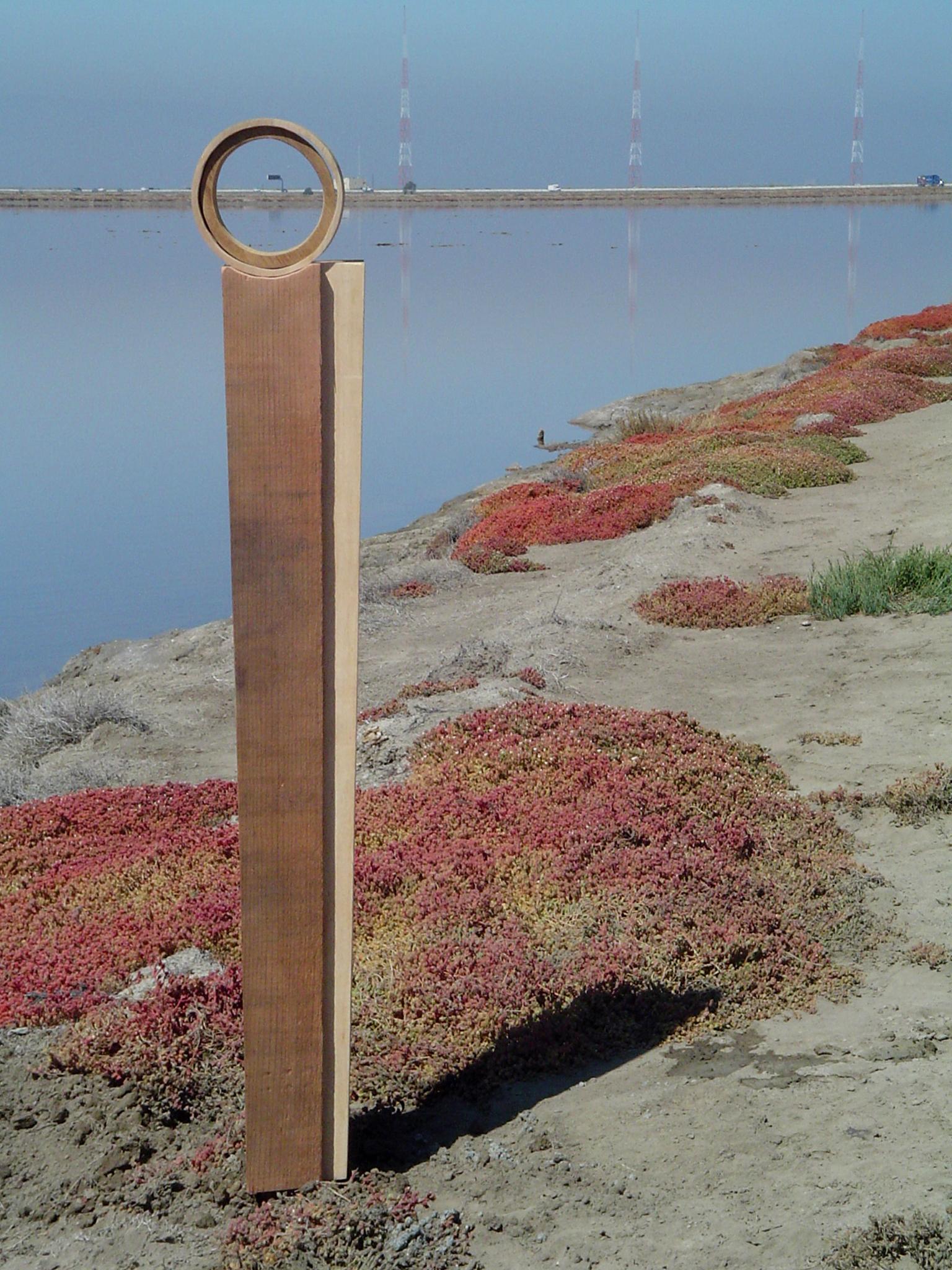 A Bird's Eye View - 2 - SF Bay NWR - Fremont, CA - copyright Marie S.A. Sorensen - 2005