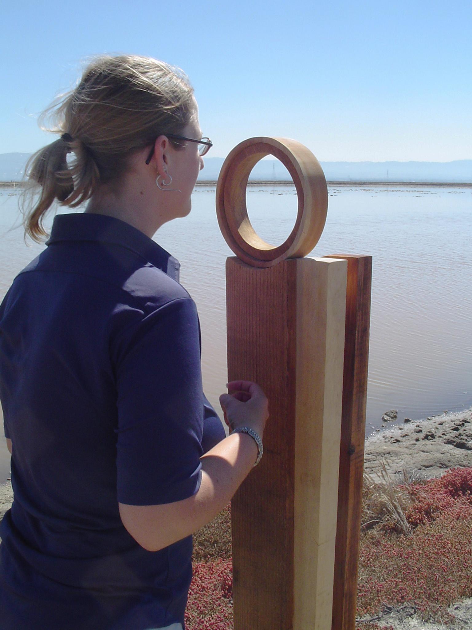 A Bird's Eye View - 3 - SF Bay NWR - Fremont, CA - copyright Marie S.A. Sorensen - 2005